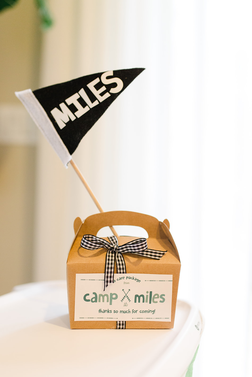 DIY Camp Themed Favors