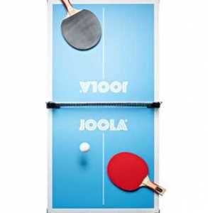 Joola Mini Ping Pong Table